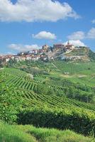 Weinort La Morra nahe Asti und Barolo im Piemont,Italien