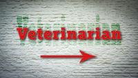 Street Sign to Veterinarian