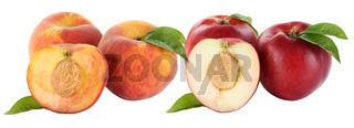 Pfirsich Pfirsiche und Nektarinen Nektarine Frucht Früchte Obst Freisteller freigestellt isoliert