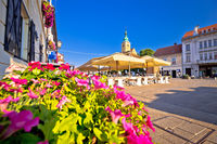 Samobor main square colorful flowers and architecture view