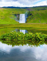 Waterfall Skogafoss reflected in pond