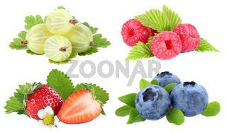 Sammlung Beeren Erdbeeren Blaubeeren Himbeeren Früchte isoliert Freisteller freigestellt