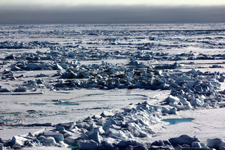 Pack ice near the North pole