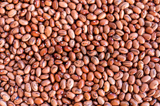 Beans of bean ( beans ).  Background of many grains of dried beans. Brown beans texture. Food background. Close up.