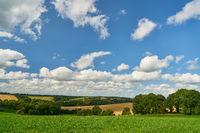 Grüne Wiese vor Feld und Himmel im Sommer