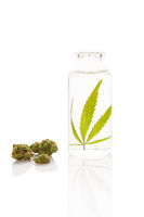Cannabis in bottle of ethanol with marijuana buds.