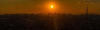 Tokyo Sunset  panorama