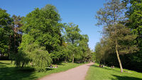 Weg an der Panke im Bürgerpark in Pankow in Berlin