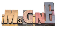 imagine - isolated word abstract in wood type