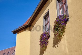 Close-up on windows with picturesque flowerpots in historical wooden houses in Erfur