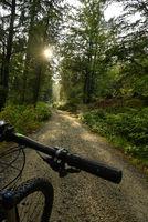 Mountainbike Rad Radweg im Wald  Freizeit
