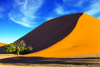 Giant dune in the Namib Desert