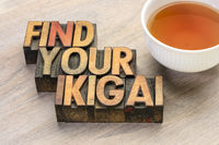 find your ikigai word abstract in wood type