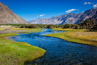 Nubra valley, Himalayas, India