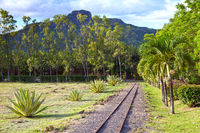 The ancient narrow gage railwayin tropical park