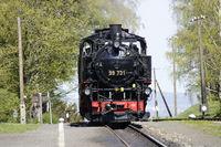 Dampflok der Zittauer Schmalspurbahn im Bahnhof Jonsdorf