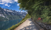 Road on lakeshore and the Alps mountains