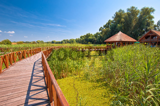 Kopacki Rit marshes nature park wooden boardwalk view