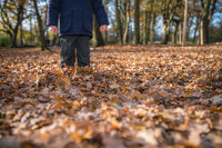 Standing in the fallen autumn leaves