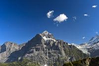 Im Wandergebiet Grindelwald First