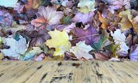 Wooden Table With Orange Leaves And Blurred Autumn Background.