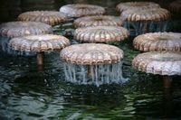 Pilzkappenförmige Brunnensprudel