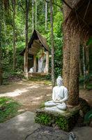Buddha statue in jungle, Wat Palad, Chiang Mai, Thailand