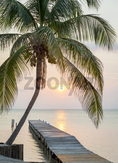 Tropical Sunrise Jetty