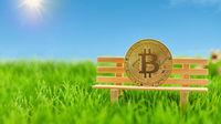 Bitcoin Münze auf Bank im Garten