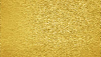 Background texture of brushed gold metal