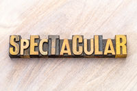 spectacular - word abstract in wood type