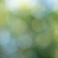 Blurred green background with blue and green bokeh circles. Abstract natural layout