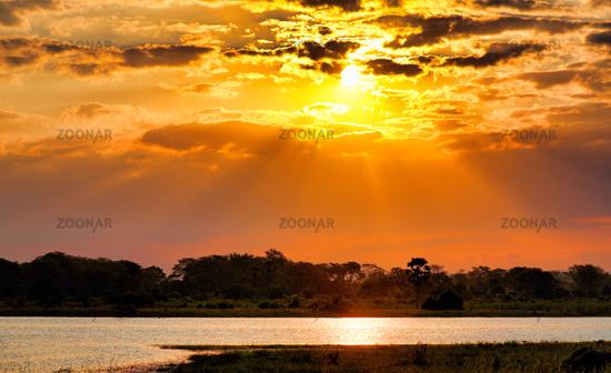 Sonnenuntergang am Shire, Liwonde Nationalpark, Malawi | Sunset at Shire, Liwonde National Park, Malawi