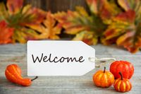 Label With Text Welcome, Pumpkin And Leaves