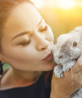 Close-up of Pretty Asian Kissing Bunny on Summer Nature