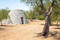 Puglia Region, Italy. Traditional warehouse made of stone