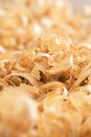 Close up view on wood shavings. Abstract background.