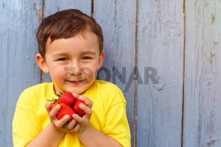 Kind kleiner Junge Erdbeere Sommer Erdbeeren Textfreiraum Copyspace draußen