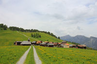 Swiss village situated high up on a hill top. Early summer.