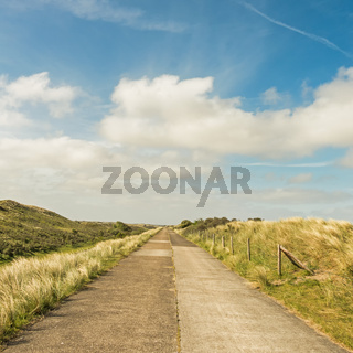 Weg durch die Dünen der Waterleidingduinen in der Nähe von Zandvoort und Amsterdam, Niederlande