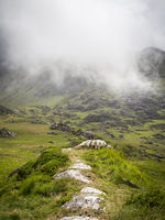 Mist and fog in national park at kerry ireland