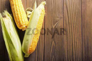 Flat lay view at Ripe fresh organic sweet corncobs on wooden table. Space for text