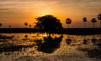 Magical Golden Sunset in the Pantanal Wetlands in Paraguay
