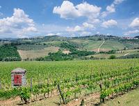 I--Weinlandschaft Toskana12.jpg