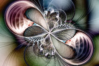 Fractal image in the form of a butterfly.