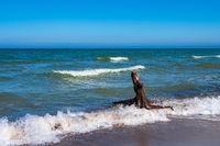 Der Weststrand auf dem Fischland-Darß