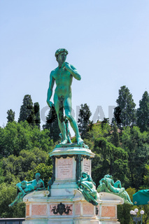 View on the Michelangelos David statue in Florence