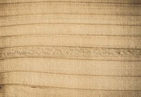Old wood texture. Perfect vintage background with copyspace.