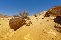 Rocky hills of the Negev Desert in Israel.