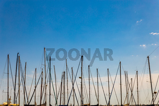 the masts of sailboats